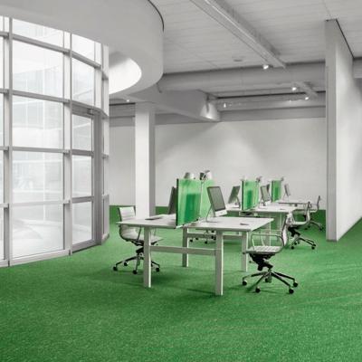 Gallery Image Green Carpet - 06
