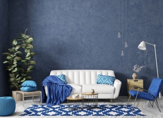 Gallery Image Blue Carpet - 03