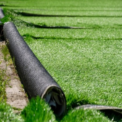 Gallery Image Artificial Grass Carpets - 08