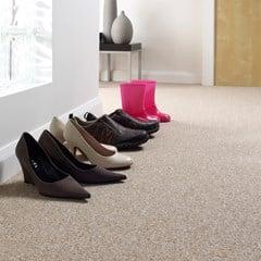 Gladiator Extra Loop Carpet