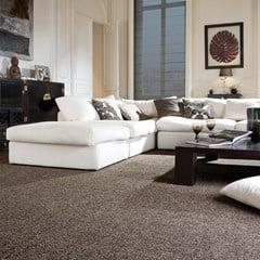 Viceroy Carpet